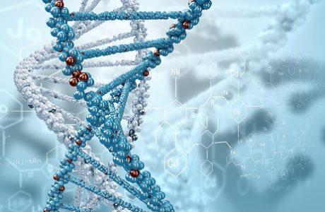 לשנות ברמה הגנטית